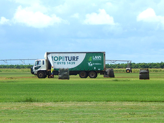 Northern Territory Turf Supplies | Top End Turf